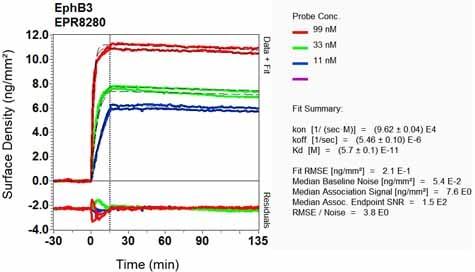 Other - Anti-Eph receptor B3 antibody [EPR8280] (ab133742)