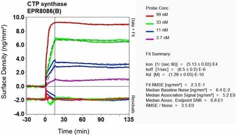 OI-RD Scanning - Anti-CTP synthase/CTPS antibody [EPR8086(B)] (ab133743)
