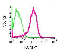Flow Cytometry - Anti-KCHIP1 antibody [EPR7624] (ab133753)