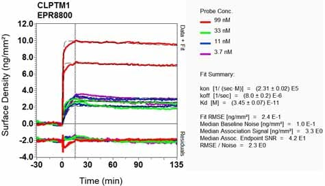 OI-RD Scanning - Anti-CLPTM1 antibody [EPR8800] (ab133756)