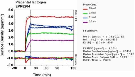 Other - Anti-Placental lactogen antibody [EPR8264] (ab133772)