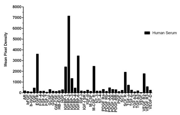 Quantification of Human Growth Factor Antibody Array