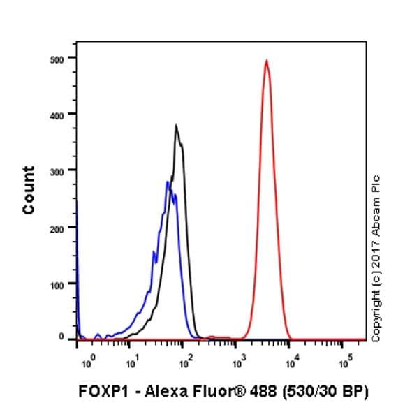Flow Cytometry - Anti-FOXP1 antibody [EPR4113] (ab134055)