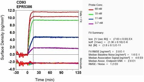OI-RD Scanning - Anti-CD93 antibody [EPR5386] (ab134079)