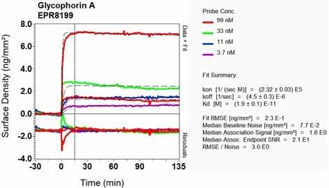 Other - Anti-Glycophorin A antibody [EPR8199] (ab134111)