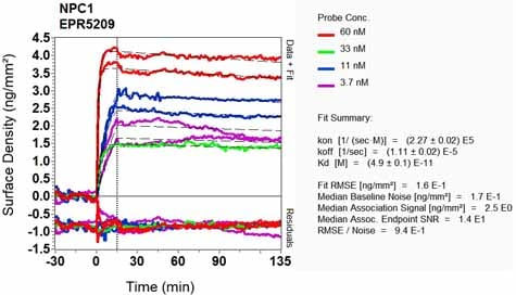 Other - Anti-Niemann Pick C1 antibody [EPR5209] (ab134113)