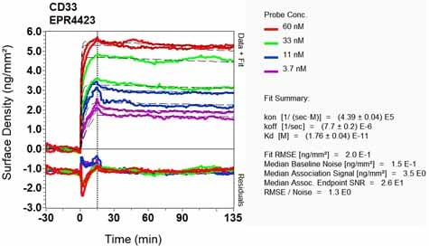 Other - Anti-CD33 antibody [EPR4423] (ab134115)