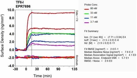 OI-RD Scanning - Anti-TFII I antibody [EPR7696] (ab134133)