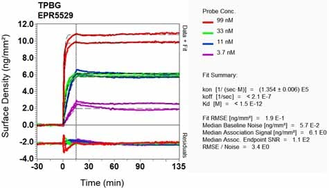 OI-RD Scanning - Anti-5T4 antibody [EPR5529] (ab134162)