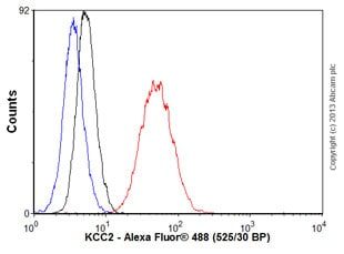 Flow Cytometry - Anti-KCC2 antibody [N1/12] (ab134300)