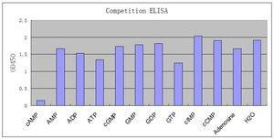 ELISA - Anti-cAMP antibody [EP8471] (ab134901)
