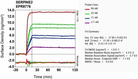 OI-RD Scanning - Anti-SERPINE2/PN-1 antibody [EPR8776] (ab134905)