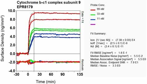 Other - Anti-Cytochrome b-c1 complex subunit 9/UQCR10 antibody [EPR8179] (ab134909)