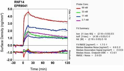 OI-RD Scanning - Anti-RNF14 antibody [EPR9041] (ab134927)