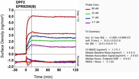 Other - Anti-DPF2/REQ antibody [EPR9206(B)] (ab134942)