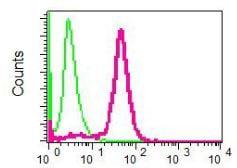 Flow Cytometry - Anti-ACY-1 antibody [EPR8444] (ab134955)