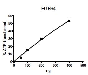 Functional Studies - Recombinant human FGFR4 protein (ab135023)