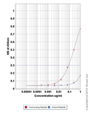 ELISA - Anti-Adipose Triglyceride Lipase (phospho S406) antibody (ab135093)