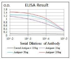 ELISA - Anti-PPM1A antibody [7F12] (ab135249)