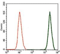 Flow Cytometry - Anti-Doublecortin antibody [2G5] (ab135349)