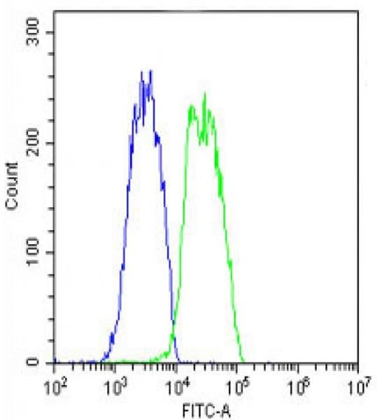Flow Cytometry - Anti-VEGFC antibody (ab135506)