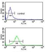 Flow Cytometry - Anti-PRAME antibody - C-terminal (ab135600)