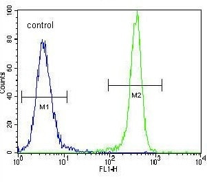 Flow Cytometry - Anti-IDH1 antibody (ab135659)