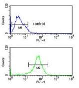 Flow Cytometry - Anti-DIO2 antibody (ab135711)