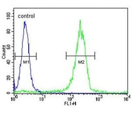 Flow Cytometry - Anti-SOCS1 antibody - N-terminal (ab135718)