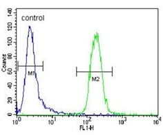 Flow Cytometry - Anti-Cytochrome P450 3A4/CYP3A4 antibody (ab135813)