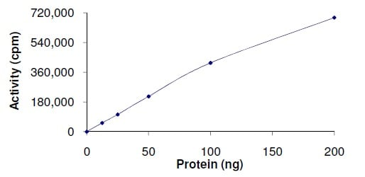 Functional Studies - Recombinant human SIK3 protein (ab136351)