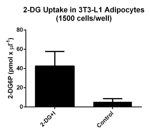 Functional Studies - Glucose Uptake Assay Kit (ab136955)