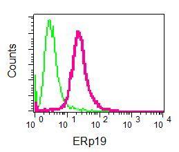 Flow Cytometry (Intracellular) - Anti-ERp18 antibody [EPR9025] (ab137035)