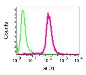 Flow Cytometry - Anti-GLO1 antibody [EPR8878] (ab137098)