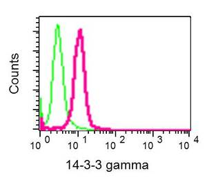 Flow Cytometry - Anti-14-3-3 gamma/YWHAG antibody [EPR9655(B)] (ab137106)