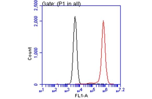 Flow Cytometry - Anti-Annexin V/ANXA5 antibody (ab137823)