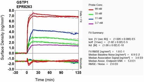 Other - Anti-GST3 / GST pi antibody [EPR8263] (ab138491)