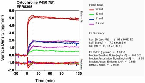 OI-RD Scanning - Anti-CYP7B1 antibody [EPR8395] (ab138497)