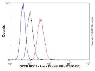 Flow Cytometry - Anti-GPCR RDC1/CXCR-7 antibody [EPR9321] (ab138509)