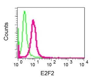Flow Cytometry - Anti-E2F2 antibody [EPR8622] (ab138515)