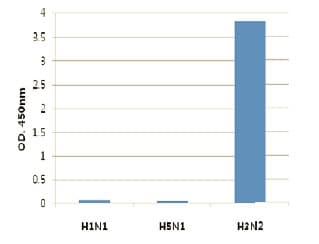 ELISA - Anti-Influenza A Virus Hemagglutinin antibody [AT1B7] (ab139361)