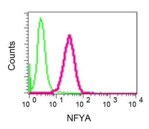 Flow Cytometry - Anti-NFYA antibody [EPR9061] (ab139402)
