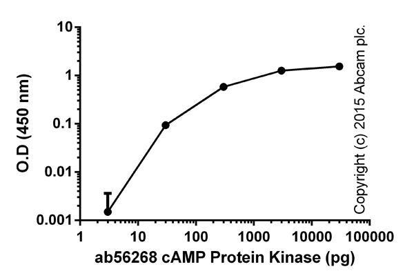 Functional Assay: ab139435 PKA Kinase Activity Assay Kit