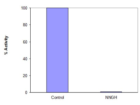 Inhibiton of MMP3 by NNGH