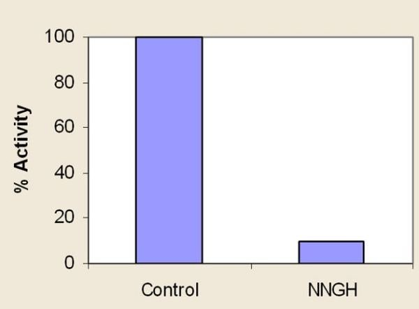 Inhibition of MMP12 by NNGH (100 nM). Example of inhibitor data.
