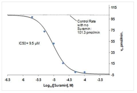 Inhibition of PTP1B by Suramin (PTP1B Inhibitor).