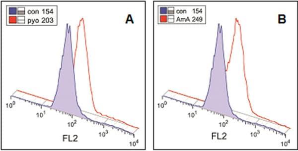 Flow cytometric analysis of Jurkat cells