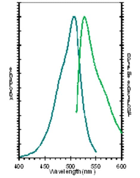 Absorption and fluorescence emission spectra