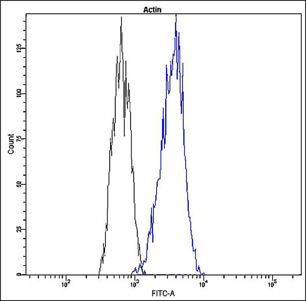 Flow Cytometry - Anti-Actin antibody [Q20-K] (FITC) (ab139548)