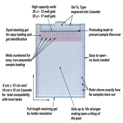 SDS-PAGE - TEO-Tricine Precast Gels - RunBlue™ (4-12%, 12-well, 10x10cm) (ab139593)
